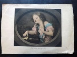 After Jean Baptiste Greuze C1880 Antique Print. Girl with dead Canary
